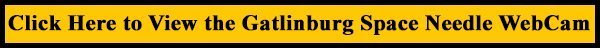 Gatlinburg Space Needle Web Cam